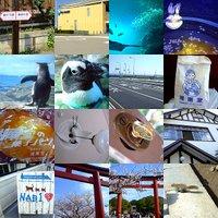 Kamaku_s